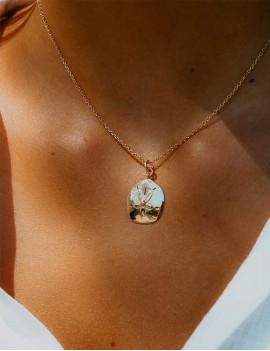 bijoux dollar des sables, symbole, cote d'ivoire