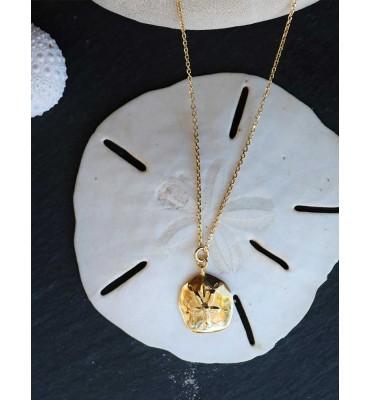 collier dollar des sables cote d'ivoire