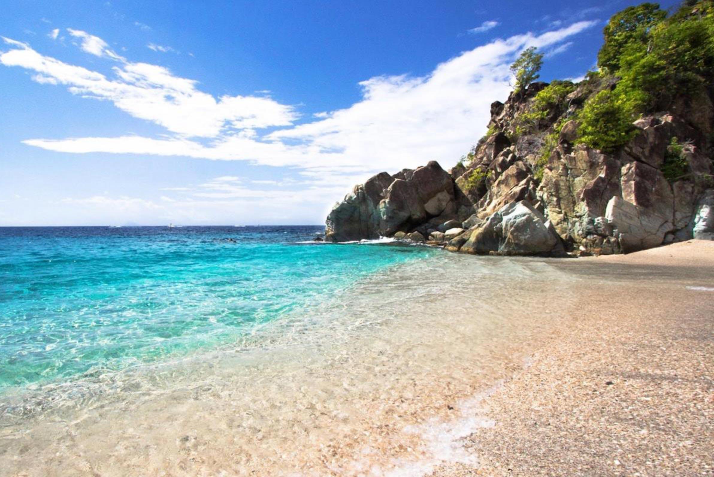 plage Shell beach deco