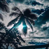 Le Soleil ☀️ . Il est enfin de retour cette semaine dans les Landes, après 3 semaines non stop de pluie. Même la nappe phréatique est en train de déborder. La piscine est à débordement mais pas dans le bon sens .... . Une semaine de soleil annoncée, trop bien, ça y est le froid est également au rendez-vous, ça ne sera pas tout de suite les cocotiers de l'îlet du Gosier #guadeloupe. . Belle semaine à tous. . . . . . . . . . . . . . #sathynelifestyle #iletdugosier #gwada #palmtrees #palm #beachlife #sunnyday #voyageursdumonde #voyage #escale #travel #traveladdict #voyageaddict #expattime #expatlife #sathynebijoux #hossegor #creatricedebijoux