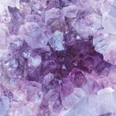 Pierre de Février  L'Améthyste, une pierre violette lumineuse. Cette pierre représente la sagesse et la tempérance.  C'est la pierre de naissance du mois de Février et des signes du zodiaque vierge, sagittaire, verseau et du poisson.  On l'offre pour le 48 ème anniversaire de mariage, d'amour, d'amitié.  Pour les passionnés du yoga et de la méditation, l'améthyste est la pierre du chakra couronne et frontal  Elle est parfaite pour les étudiants et les personnes dans les affaires.  l'Améthyste est une pierre calmante et purifiante.  Elle donne confiance en soi, renforce la capacité à prendre des décisions, à discourir en public et à négocier. Elle aide à assumer ses responsabilités, éloigne la nervosité, les tensions et l'hypersensibilité. Elle favorise l'équilibre émotionnel et mental, diminue les insomnies, apaise le chagrin et adoucit le mal du pays. Elle encourage les changements, la progression sociale, le succès en affaires et l'enrichissement.  La légende : Bacchus, dieu du vin et de la luxure, jeta accidentellement un sort à la jeune vierge Améthyste alors qu'elle se rendait au temple de Diane. Sur le point d'être mise en pièce par des animaux sauvages, elle invoque Diane (déesse de la chasteté et de la chasse) qui la métamorphosa en pierre blanche. Reconnaissant son erreur, Bacchus versa du vin sur la jeune fille transformée en pierre qui devint alors une améthyste.   . . . . . . . . #sathyne #sathynebijoux #amethyste #amethyst #bienfaitsdespierres #pierredefevrier #bijoux #creatricedebijoux #creatricesfrançaises #bagueamethyste #bijouxamethyste #leslandes #shoppingonline #baguereglable