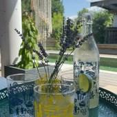 On ne boit pas que l'apéro par ici, on boit de la citronnade aussi !!!!  Voici ma recette :   Pour 1litre de citronnade:  8 citrons jaunes bio 1 litre d'eau gazeuse  1 morceau de gingembre (suivant vos goûts) Je ne sucre pas, mais vous pouvez rajouter du sucre de canne.  Passez les citrons et le gingembre à l'extracteur de jus, préparer 1 litre d'eau gazeuse, mélangez le tout dans une jolie bouteille et dégustez.  Petite astuces :  1 - coupez les citrons en quarts et épluchez les ensuite, un jeu d'enfant (voir sur la vidéo) et beaucoup plus rapide qu'éplucher un citron de manière classique 😉  2 - je prépare l'eau gazeuse avec @sodastream_france pour éviter les bouteilles en plastiques et d'avoir toujours de l'eau gazeuse sous la main  .  .  .  .  #artisanatfrancais #creationsfrancaises #artisanatlocal #hossegor #leslandes #seignossetourisme #sudouest