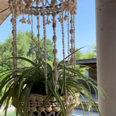 Elle est de retour, la suspension en coquillages pour y mettre une plante ou une bougie. Sur la terrasse ou à l'intérieur elle est parfaite !  Donnera un goût de vacances tout au long de l'année à votre home sweet home….  .  .  .  #sathyne #decocoquillages #decoterrasse #leslandes #conceptstore