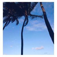 Le ciel bleu est là... bon ok les cocotiers sont restés sur my lovely island....⠀ Belle journée 💋⠀ ⠀⠀⠀ #sathynebijoux #mood #inspiration #blue #mumpreneur #solopreneur